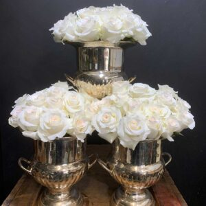 Flower Flower Southern Highlands, Champagne Bucket of Roses