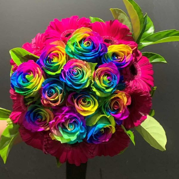 Flower Flower Southern Highlands, Rainbow Roses